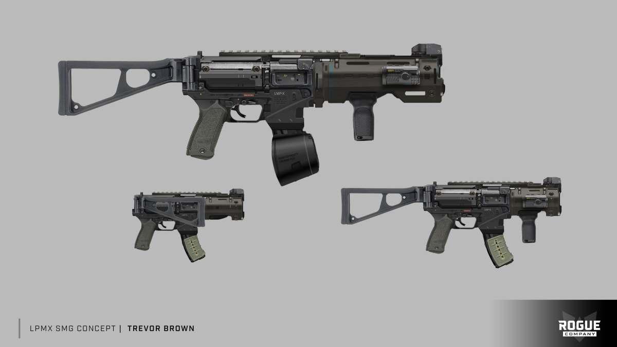 Rogue Company weapon