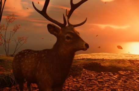 All Deer Sanctuary locations in Ghost of Tsushima