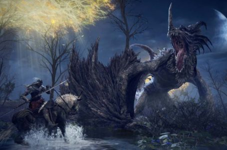 Elden Ring will bring back the iconic Dark Souls 2 Twinblades weapon