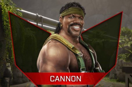 How to play Cannon in Rogue Company – Abilities, loadout, strengths