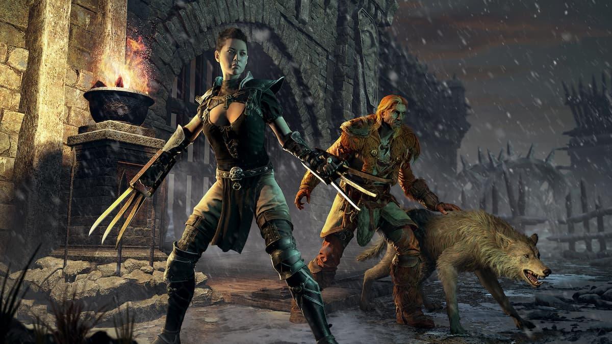 Diablo 2 Assassin Druid
