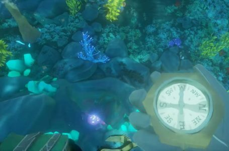 How to enter the Shrine of the Coral Tomb in Sea of Thieves