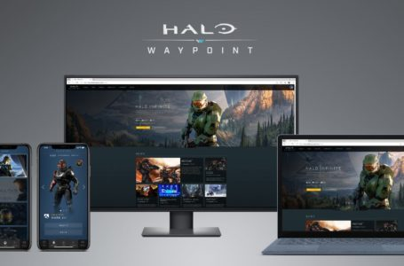 Halo Insiders can access a new version of Halo Waypoint during Infinite's second tech preview