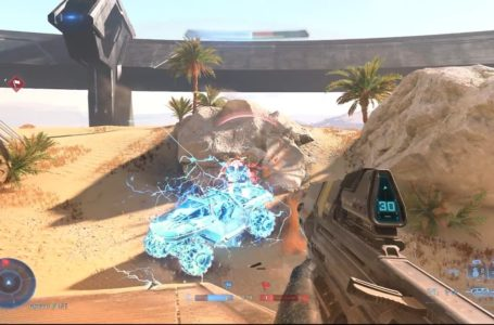 What is the Dynamo grenade in Halo Infinite, and what does it do?