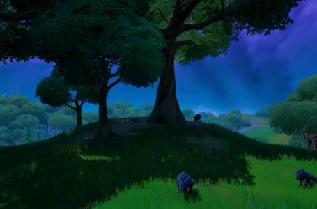 Where to hunt Wolves in Fortnite Chapter 2 Season 8