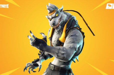 Where to find Dire in Fortnite Chapter 2 Season 8 – NPC #22 Location