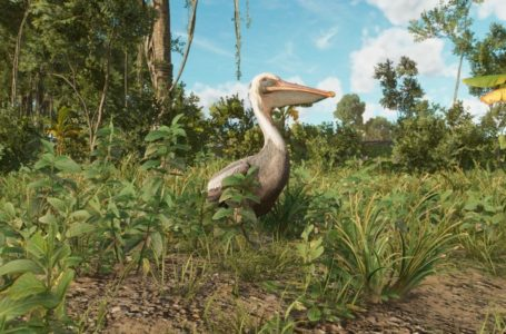 How to feed pelicans in Far Cry 6