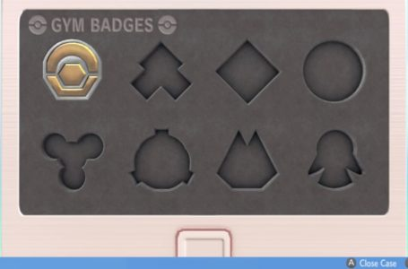 Gym badge polishing and other features will return in Pokémon Brilliant Diamond and Shining Pearl