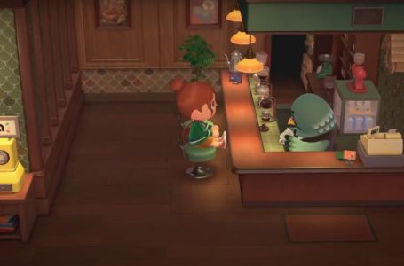 The Roost is coming to a free Animal Crossing: New Horizons 2.0 update, with paid DLC also on the way