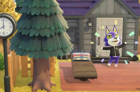 All Ordinances and how to enact them in Animal Crossing: New Horizons