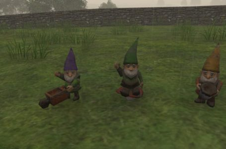All gnome locations in The Good Life – The Heritage of Rudman White quest guide
