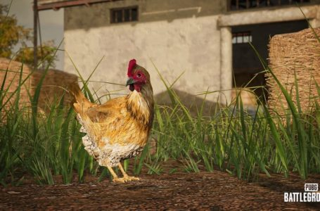 PUBG's latest update will introduce a smoke grenade launcher and traitorous chickens
